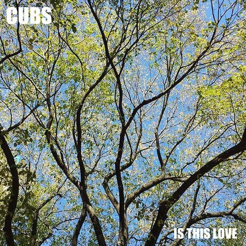 Cubs - Is This Love